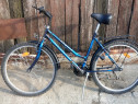 Bicicleta Lagune