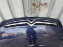 Grila Radiator Citroen Xsara Picasso