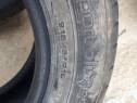 Cauciucuri Dunlop bluresponze