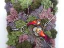 Tablou licheni stabilizati 'Primavara' 32,5 x 24 cm