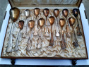 Set lingurite argintate