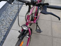 "Bicicleta ALPINA-26""-18 Viteze"