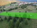 Teren Paltinis - Sibiu 3526 mp