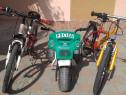 Două biciclete și o tricicletă electrică