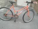 Bicicleta dama copii și adulți