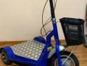 Carut Persoane Handicap-Dizabilitati 36V Platforma-Germania