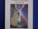Intre fantani celeste/Nicolae Dorel Trifu/cu autograf/ R2P4S