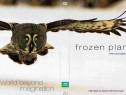 Frozen Planet 2011 Planeta inghetata