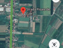 Teren in Satu Mare parcelat ,str.Floare de colt 5210 mp
