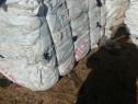 Sac big bags