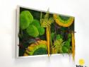 Tablou licheni, muschi si plante naturale Jolie Arts, 60x100