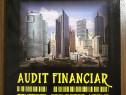 Audit financiar - Emil Horomnea