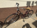 Bicicleta clasica dama