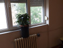 Apartament 2 cam. conf. 2, z. Calea Aradului, et. 4, tip X