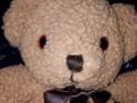 Papusi si ursuletul teddy