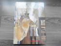 Album de arta pictura gabriel catrinescu