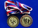 Medalii cehia 2007-2013