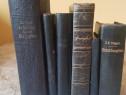 6 biblii şi cārți de rugāciune vechi scrise în germanā