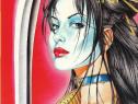 Carte roman grafic benzi desenate color SHI tip MANGA