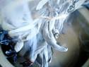 Salvie pentru fumigare