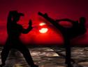 Cursuri arte martiale (Krav Maga) -