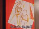 Teologia pastorala. pornind de la frumusete - tomas spidlik