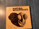 Natura sculpteaza de Ion Lazu cu autograf album de arta