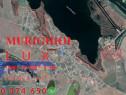 ID 7407 Teren intravilan * Comuna Murighiol