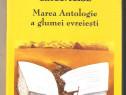 Tesu Solomovici-Cartea cu anecdote circumcise