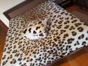 Patura cocolino cu blanita 200x230cm Leopard print