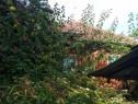 Teren si casa in apropierea Lacului Mostistea, 2000mp/48mp