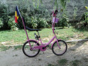 Bicicleta Pegas Kent Custom