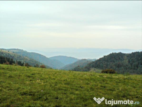 Vanzare  terenuri constructii  400 mp Mures, Ludus  - 3000 EURO