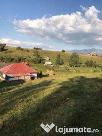 Vanzare  terenuri agricol  10000 mp Brasov, Fundata  - 70000 EURO