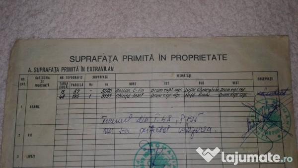 Vanzare  terenuri constructii  5000 mp Braila, Gradistea  - 60000 EURO
