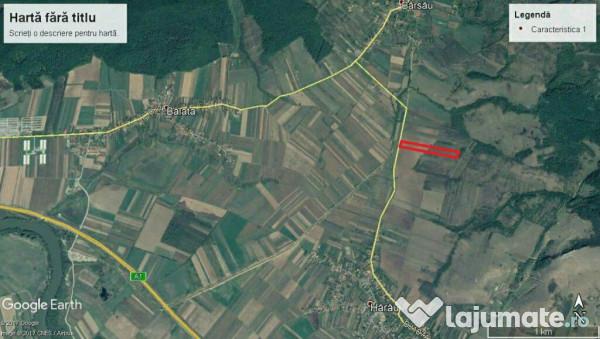 Vanzare  terenuri agricol  12 ha Hunedoara, Harau  - 36000 EURO