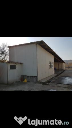 Vanzare  spatii comercial Gorj, Turceni  - 7000 EURO