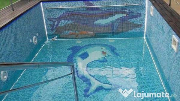 Constructii piscine saune 100 eur for Constructii piscine