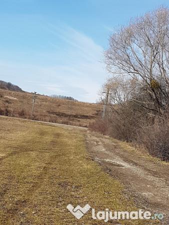Vanzare  terenuri agricol  7000 mp Maramures, Copalnic-Manastur  - 1400000 EURO
