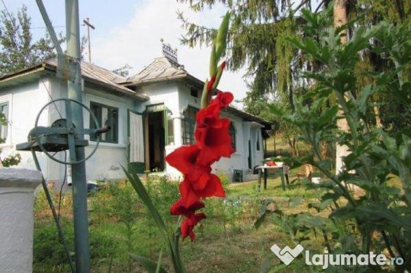 Vanzare  casa  3 camere Olt, Profa  - 13000 EURO