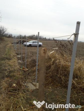 Vanzare  terenuri constructii  800 mp Bacau, Siretu (Letea Veche)  - 4000 EURO