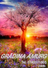 GRADINA AMURG