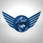 Agenti securitate (decathlon timisoara)