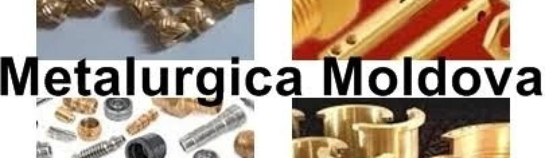 www.bacaufierforjat.ro